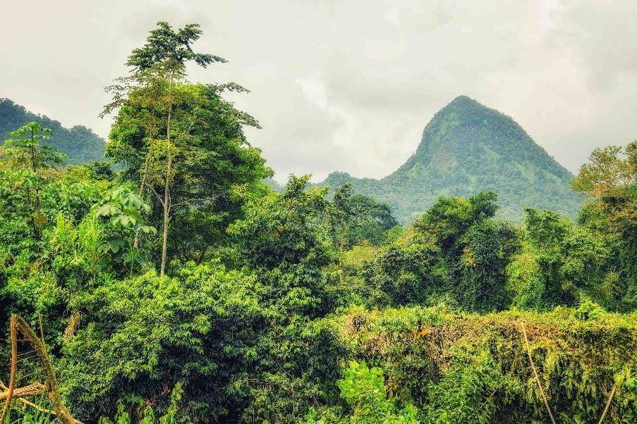 Tropical landscape of Sao Tome