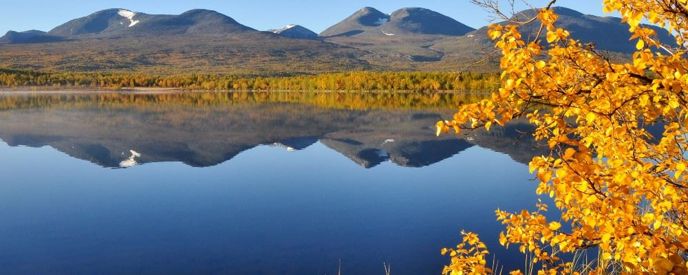 Autumn in Swedish Lapland, Sweden