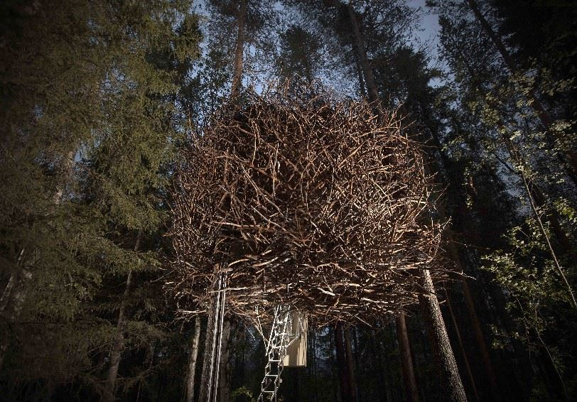 The Birds Nest, Treehotel