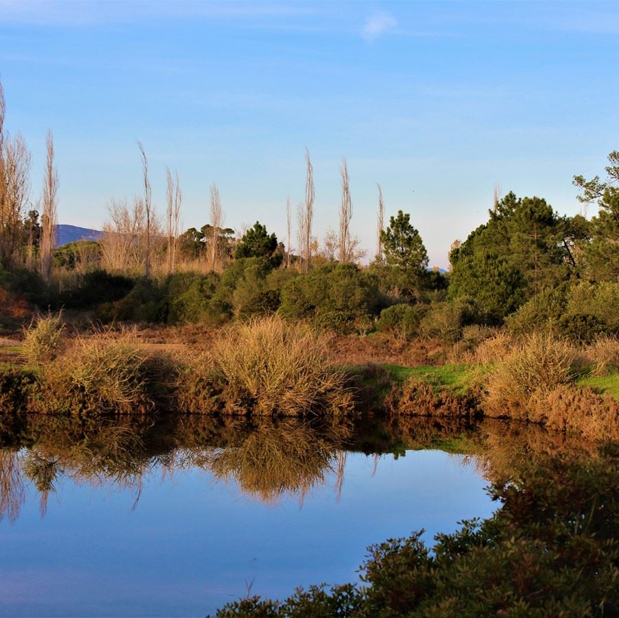 Ria Formosa National Park