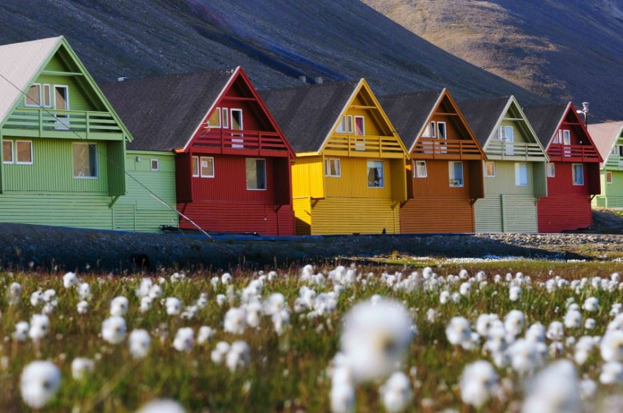 Colourful wooden houses of Longyearbyen