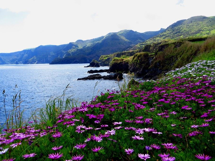 Flores, The Azores