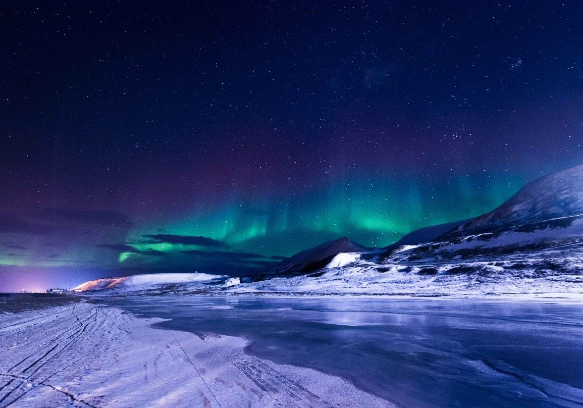 D Dog Hotel Svalbard Holidays 2019...