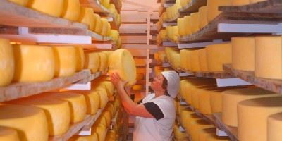 Cheese Factory, Sao Jorge