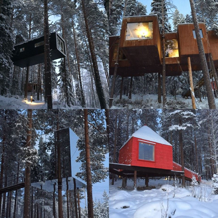 Tree Hotel, Harads, Swedish Lapland