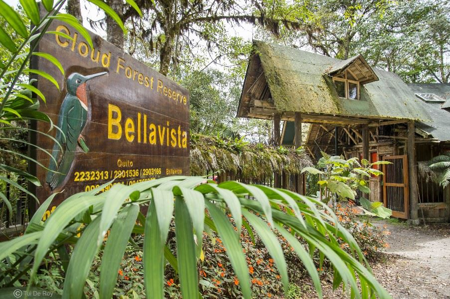Bellavista Lodge, Mindo Cloud Forest