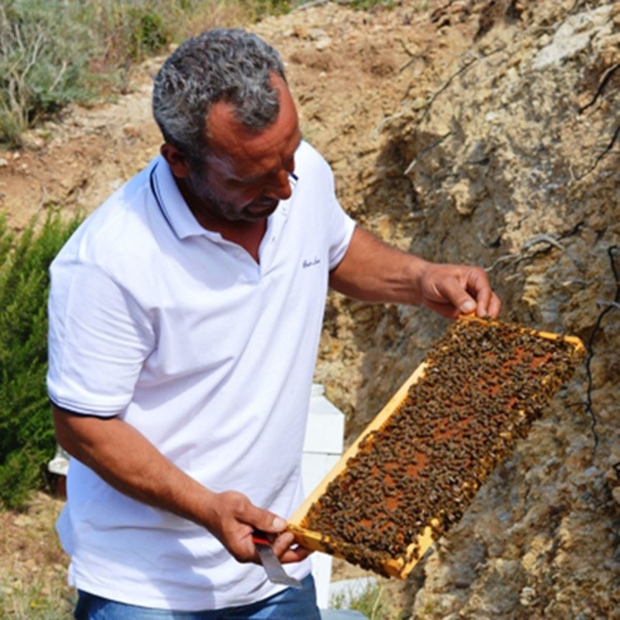 Bee keeping in Ikaria