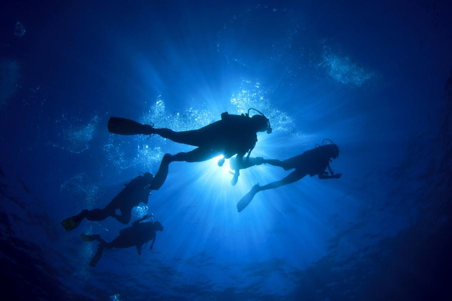 Diving off the coast of Santa Maria, The Azores