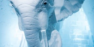 Elephant ice sculpture, ICEHOTEL, Swedish Lapland