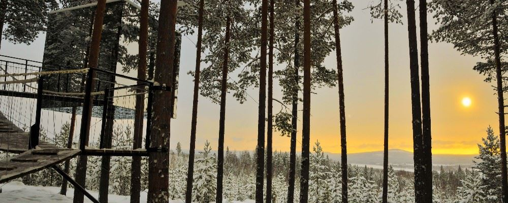 Treehotel, Swedish Lapland,